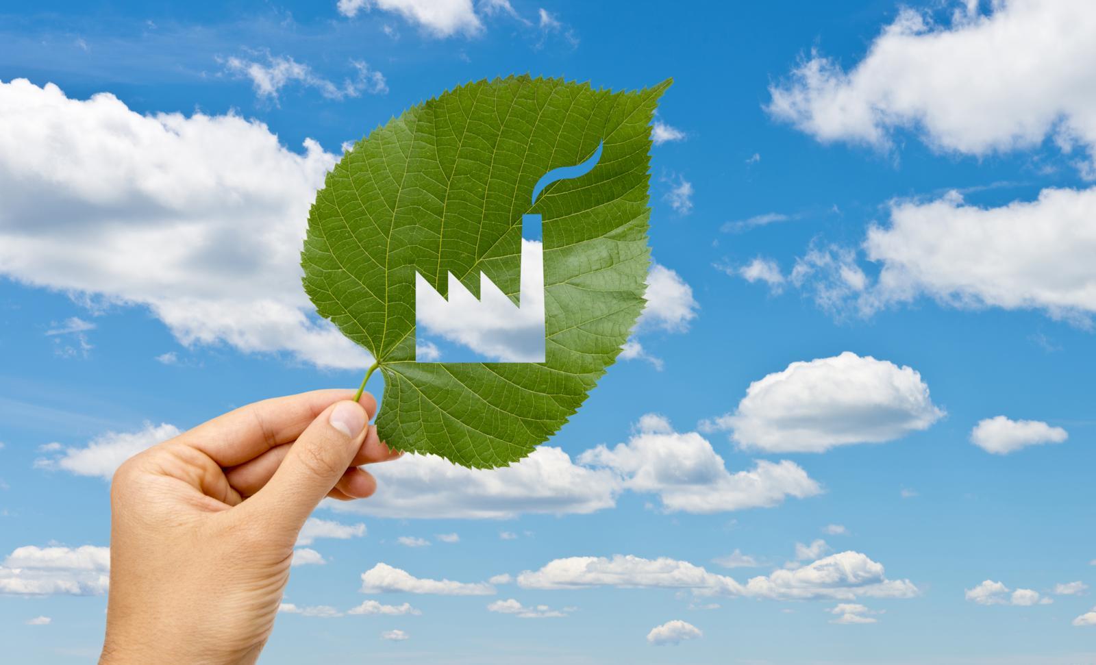 solutii sustenabile teraplast
